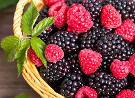 一组红红的树莓特写图片欣赏