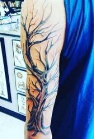 树的纹身图案 10张不同形态关于树的纹身图案