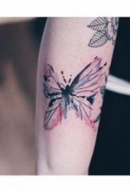 纹身小蝴蝶图案  9款适合女生的唯美蝴蝶纹身图案