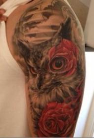 紋身貓頭鷹圖片  羽毛蓬松柔軟的貓頭鷹紋身圖案