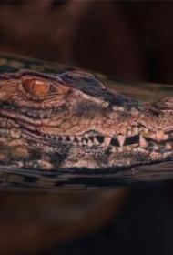 鳄鱼纹身图案  9张凶猛残忍的鳄鱼纹身图案