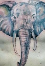 小象紋身圖案   10款憨態可掬的小象紋身圖案