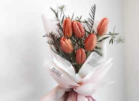 值得纪念和祝贺的日子不可缺少的花束