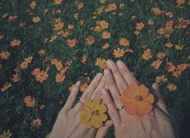 但还是愿意去了解你 拥抱你这一定是最幸运的事了