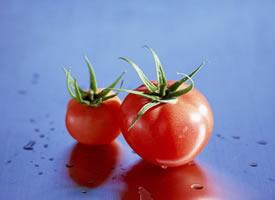 又圆又红的西红柿像苹果
