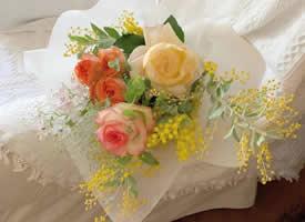 一组色彩柔和的清新花束图片欣赏