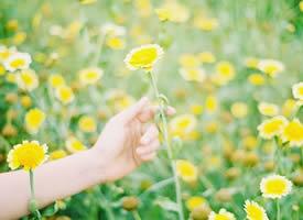 如果你能带着信心和耐心,你想要的美好,时间都会给你