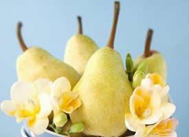 黄澄澄 甜滋滋的香梨图片欣赏