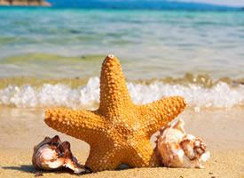 清涼唯美海灘夏日風光桌面壁紙