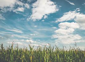 清新护眼蓝天白云风景桌面壁纸