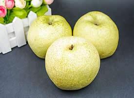 轻脆嫩黄,优雅甜香的梨图片欣赏