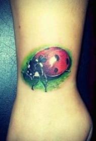 紋身有趣的圖案   小巧而又可愛的瓢蟲紋身圖案