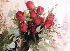 一組簡單美麗的花束圖片欣賞