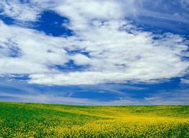 精选优美自然风景图片桌面壁纸