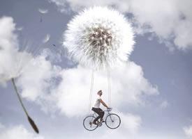 我们选择装傻来感受那一点点叫做幸福的东西