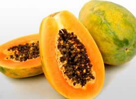 一组投我以木瓜水果图片欣赏