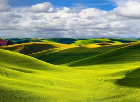 绿色养眼草原风光高清桌面壁纸