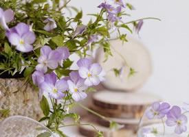 一組超美的花藝拍攝圖片欣賞