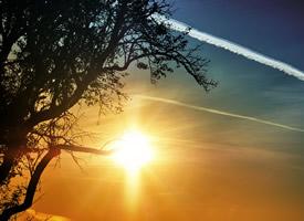 放眼望去,太陽是多么的耀眼、多么的明亮