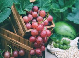 這個正是吃葡萄和西瓜的好季節