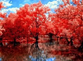 大自然唯美意境风景图片壁纸