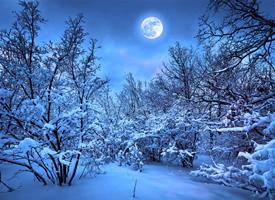 寂靜月下美景高清桌面壁紙