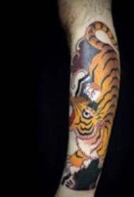 男性的一組9張老傳統花臂紋身圖案