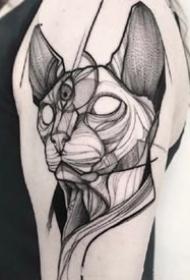 斯芬克斯猫主题的一组猫纹身图片