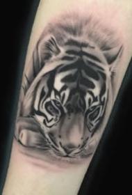 黑灰色的一组动物头像纹身图案欣赏