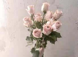 一捧簡約又好看的紀念日花束圖片