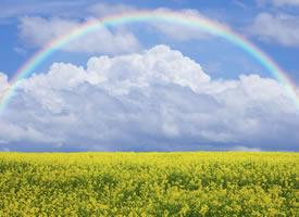 唯美梦幻的彩虹风景桌面壁纸