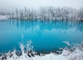 美麗的冬天雪景高清圖片
