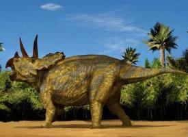 一组三角龙恐龙图片