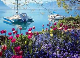 一组唯美的瑞士旅游风景区图片