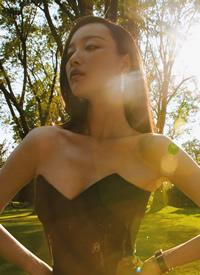 倪妮長禮服性感優雅的圖片欣賞