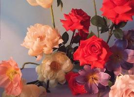 一組五顏六色的鮮花圖片