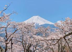 新仓山浅间公园,欣赏富士山的好去处