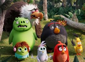 一组超可爱的愤怒的小鸟图片