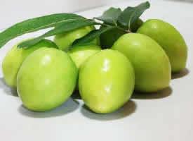 绿莹莹甜丝丝的青枣图片