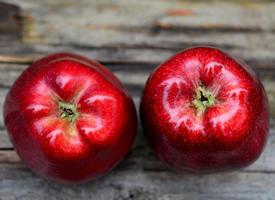 一组香脆可口的苹果图片欣赏