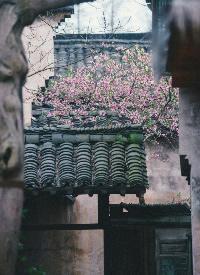 中国式瓦房,岁月静好的美