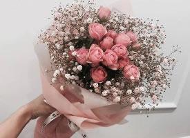 愿你的生活和花一樣美好 ?