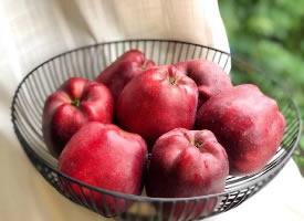 一组红红的苹果图片