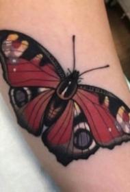 纹身蝴蝶素材 一组女生漂亮的蝴蝶纹身手稿和作品