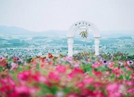 簡單干凈的北海道,夢一樣的地方