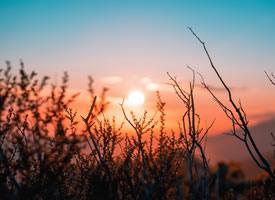 落日是美丽的 它一点点的下沉