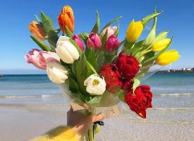 一組漂亮的鮮花花束圖片