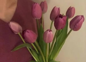 郁金香花束也很好看喲