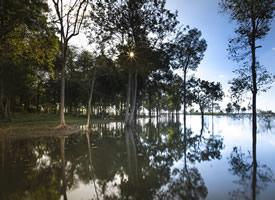 一組樹木水面倒影風景圖片欣賞