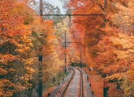 日本的秋天,充盈著靜謐的美